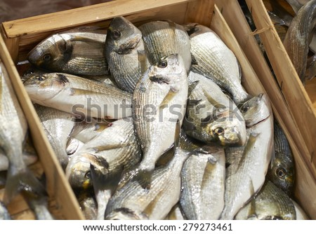 detail of seabreams at fish market in italy - stock photo