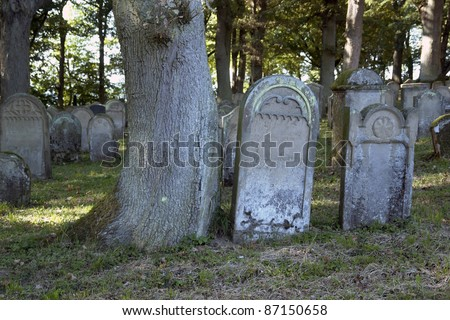 detail of some tumbstones in a old jewish graveyard in Southern Germany