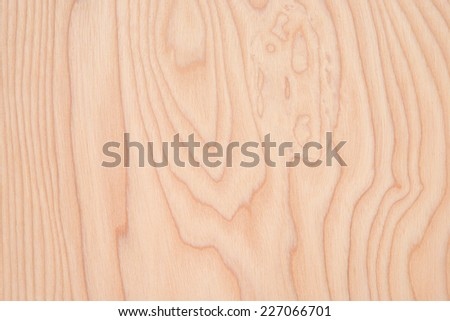 Detail of the board of ash after pretreatment - stock photo