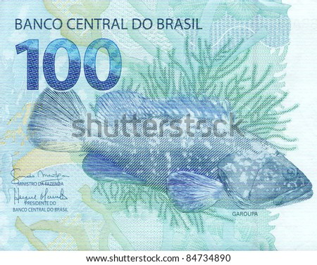 detail of the garoupa (Epinephelus lanceolatus) artwork on 100 reais banknote from brazil