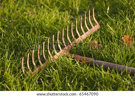 Detail of the iron rake in the grass. - stock photo