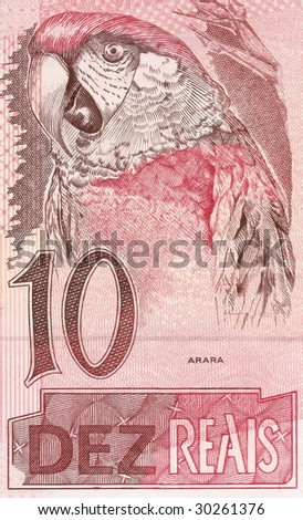 detail of the parrot 10 real banknote from brazil - stock photo