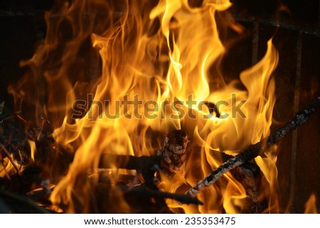 Detail picture of the flames from a burning wood - stock photo
