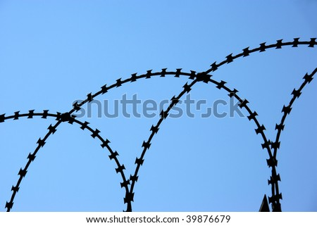 detail shot from a barbed wire fence with blue sky