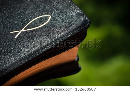 Detail view of a Bible on a green park background with the christian symbol of fish (Ichthys) - stock photo