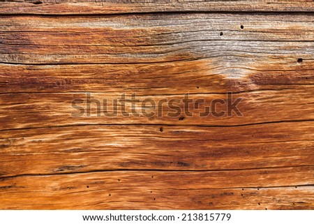 Detailed background abstract image of the aging wood of a dead cedar tree in macro close up - stock photo