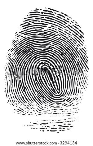 Detailed black fingerprint isolated on white background. - stock photo