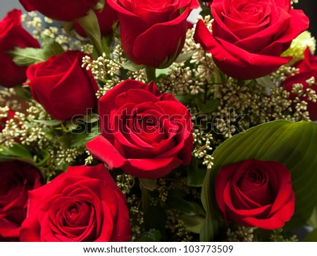 Detailed close shot of velvet red roses in romantic valentines bouquet - stock photo