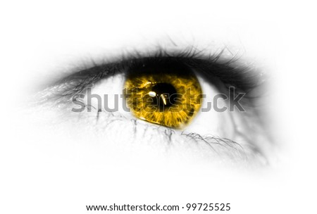 Detailed close-up view of the human eye - stock photo