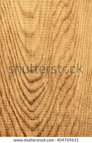 Detailed coarse structure of longitudinal section of wooden board with annual rings, sepia