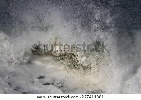 Detailed image of a large breaking oceanic wave seeing foam - stock photo