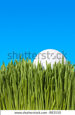 Detailed Low Angle Close Up of Golf Ball, Lying In Green Grass with Blue Copy Space ~ Clipping Path - stock photo