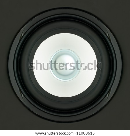 Detailed View of a LoudSpeaker