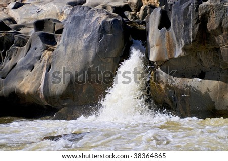 Details at the banks of Olifant River in South Africa