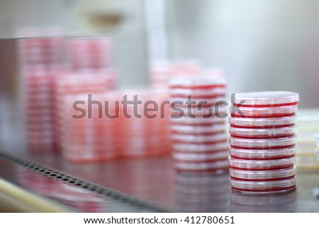 Details of microbiology laboratory; Petri dishes for bacteria growing - stock photo