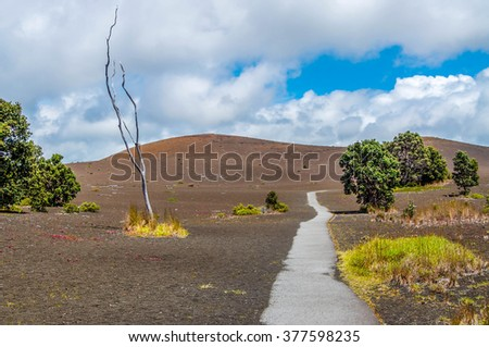 Devastation Trail leading into an old lava flow in Hawaii Volcanoes National Park on the Big Island. - stock photo