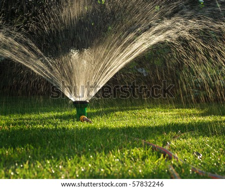 Device Of Irrigation Garden. Irrigation System   Technique Of Watering In  The Garden. Lawn