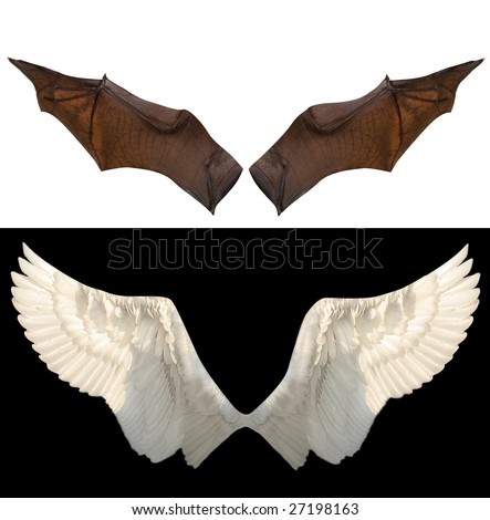 devil and angel wings - stock photo