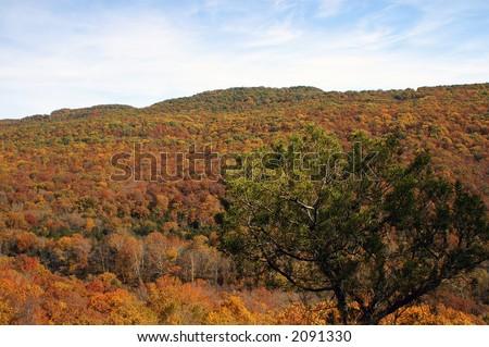 Devils' Den State Park Overlook Arkansas - stock photo