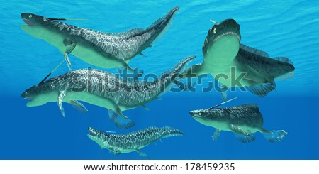 Devonian Xenacanthus Fish - Xenacanthus is a prehistoric shark from the Devonian and Triassic Periods of Earth's history.