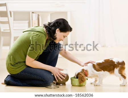 Devoted woman kneeling and feeding hungry pet dog - stock photo