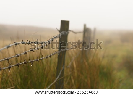 Dew drops on a barb wire fence in the Yorkshire English countryside on a foggy day. - stock photo