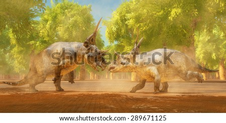 Diabloceratops Dinosaur Fight - Two Diabloceratops dinosaurs fight for mating rights during the Cretaceous Period of Utah, North America. - stock photo