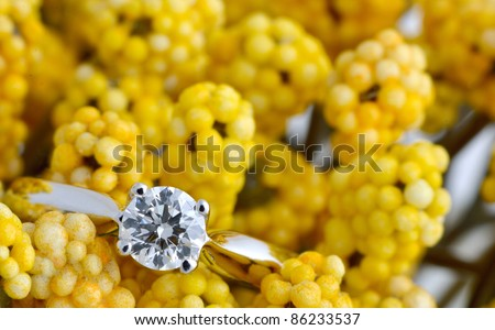 diamond ring on yellow flower - stock photo