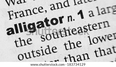Dictionary definition of the word Alligator - stock photo