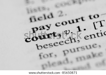 Dictionary Series - Court