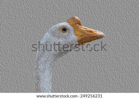 Die Cut from photo the goose in the livestock - stock photo