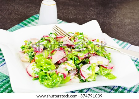 Dietary Salad from Fresh Juicy Radish, Green Onions, Lettuce, Carrots, Yogurt Studio Photo - stock photo