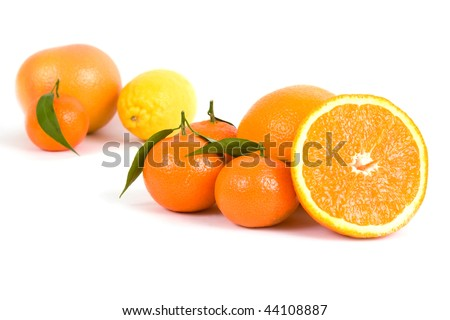 Different citrus on a white background