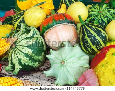 Different colored pumpkins ready for Halloween feast Fertility feast in Kyustendil, Bulgaria - stock photo
