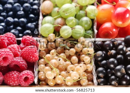 Different colorful berries in the box