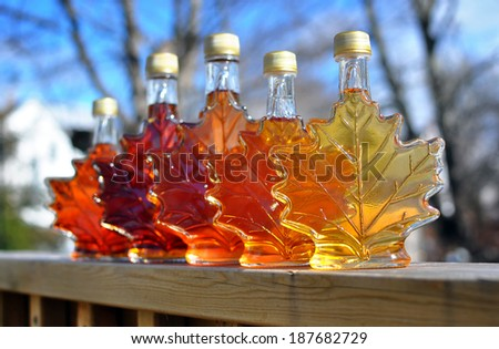 Different colour variatons of maple syrup made by a backyard hobbyist in Springhill, Nova Scotia. - stock photo