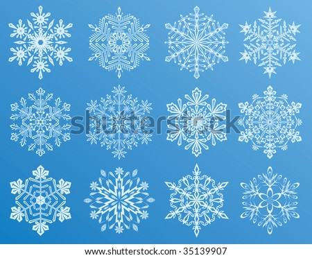 Different forms of Snowflakes, illustration