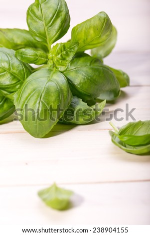 Different fresh herbs on wooden background, parsley and basil and rosemary - stock photo