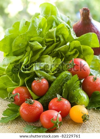 Different fresh vegetables on natural background. Selective focus - stock photo