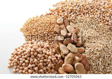 different grains isolated on white background - stock photo