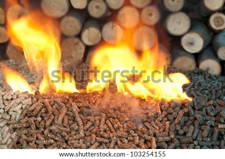 Different kind of pellet- oak, pine,sunflower, in flames. Selective focus on the heap. - stock photo