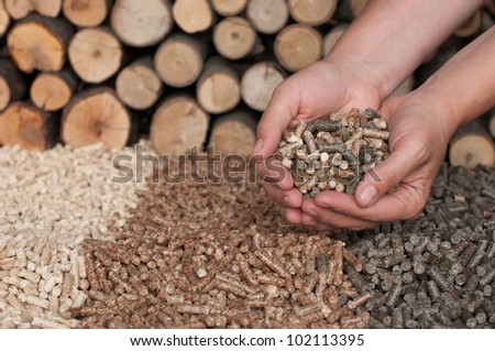 Different kind of pellets- oak, pine,sunflower, in female hands- selective focus on the hand and the heap - stock photo