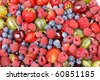 different kinds of berries - stock photo