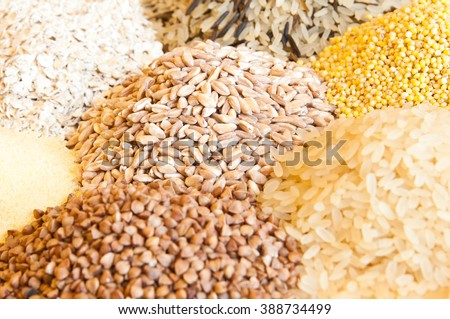Different kinds of cereals: oats, millet, rice, buckwheat, wheat, spelt - stock photo
