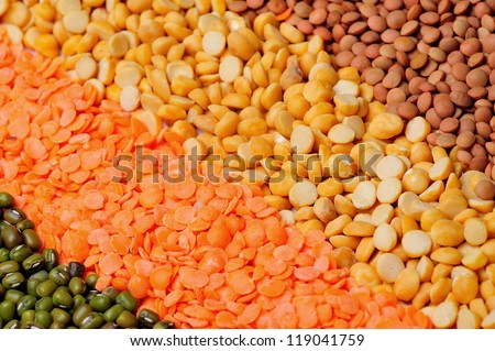 Different kinds of grains , dhall, lentils, bean sprout - stock photo