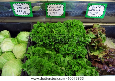 Different kinds of lettuce on sale at a shopping market grocery store. - stock photo