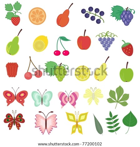 different nature objects on white background