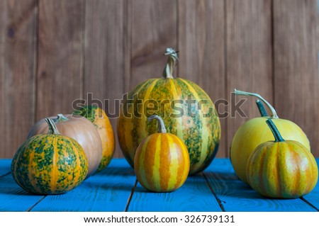 Different pumpkins on blue wooden surface and dark background. Autumn harvest. - stock photo
