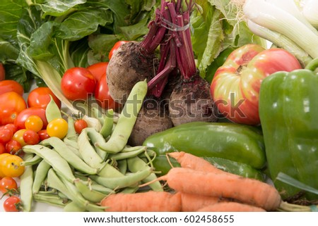 Different seasonal vegetables isolated on white background