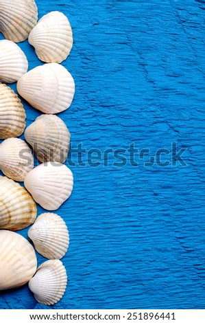 Different shellson blue background with place for text - stock photo
